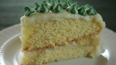 Muzlu Pasta Tarifi 2 – Pasta Tarifleri