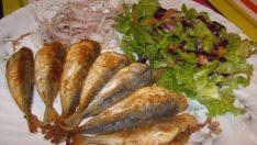 Fırında İstavrit Tarifi – Balık Tarifleri