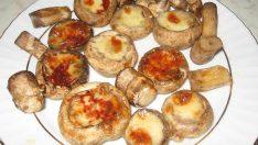 Patates Püreli Kaşarlı Mantar Tarifi – Aperatif Tarifler