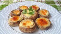 Peynirli Mantar Dolması Tarifi – Aperatif Tarifler