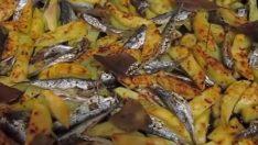 Fırında Hamsi Tarifi – Balık Tarifleri